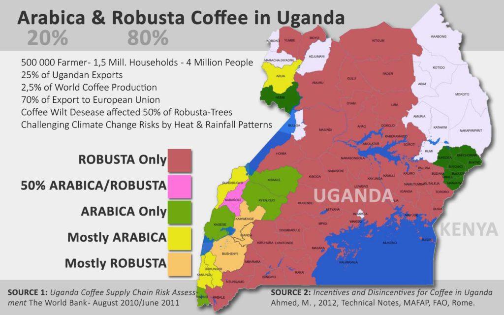 #coffee #coffeegrowing #ugandacoffee #coffeemorning #latteart #barista